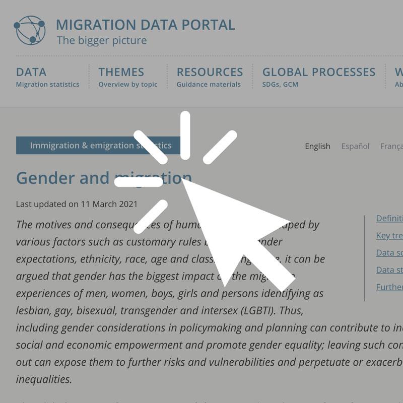 Migration Data Portal
